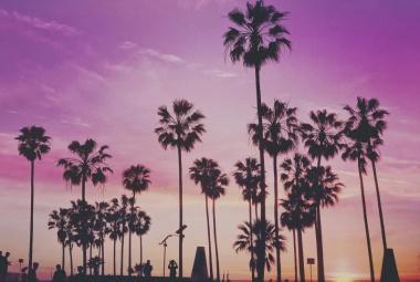 Irány Miami Beach