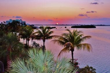 Florida Napos Oldala
