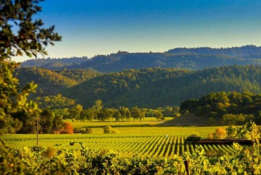 San Francisco és Napa völgyi bortúra / Frei Tamás és Méhész Zsuzsa kíséretében