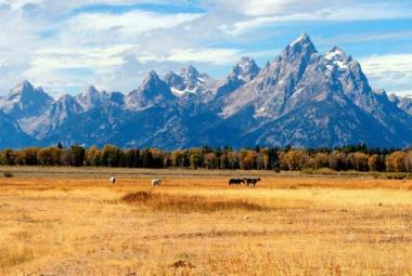 Közép-Nyugat Kincsei - Salt Lake City